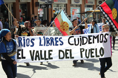 Marcha Puelo en Valdivia 16