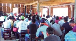 Consulta indígena Perú