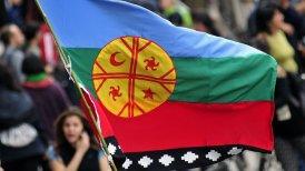 bandera mapuche