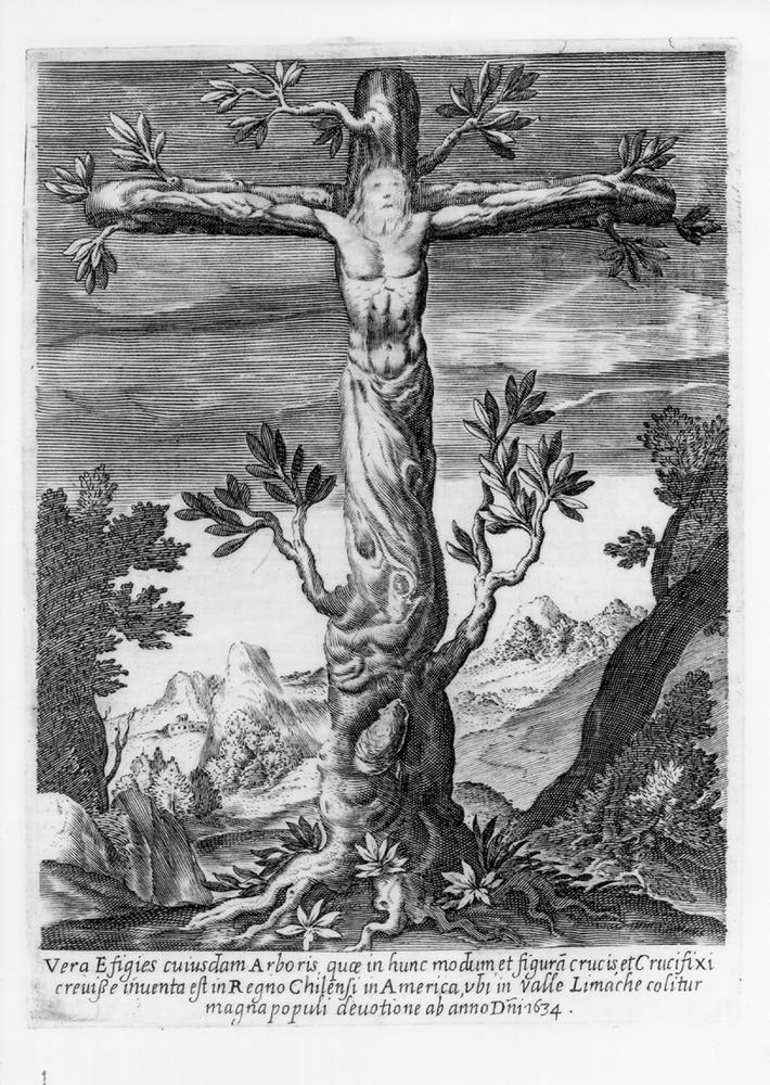 cruz de limache