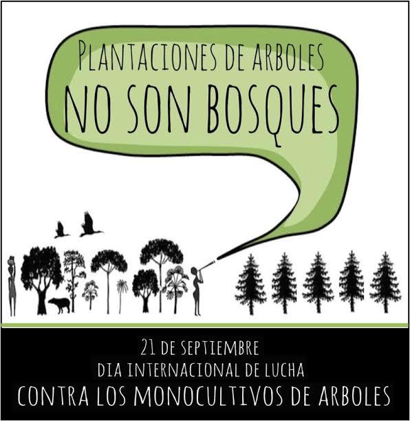 dia internacional contra monocultivos